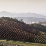 landscape_corporate_francesco_margutti_fotografo_freelance_coppo